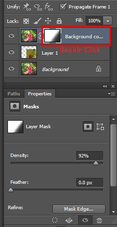 Adjusting the Layer Mask Panel