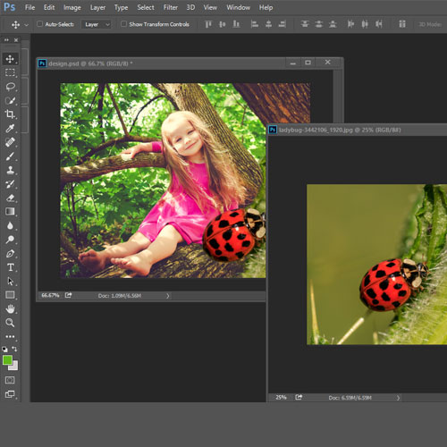 Two image are selected one photo containing a little girl and another a ladybug