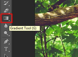 The Gradient Tool has been selected