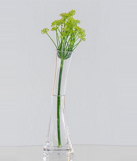 clear flower vase