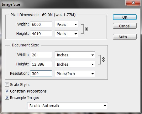 Changing Pixel Size in Photoshop