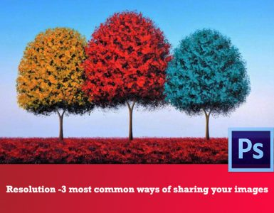 Showing 3 different color 7 sized trees